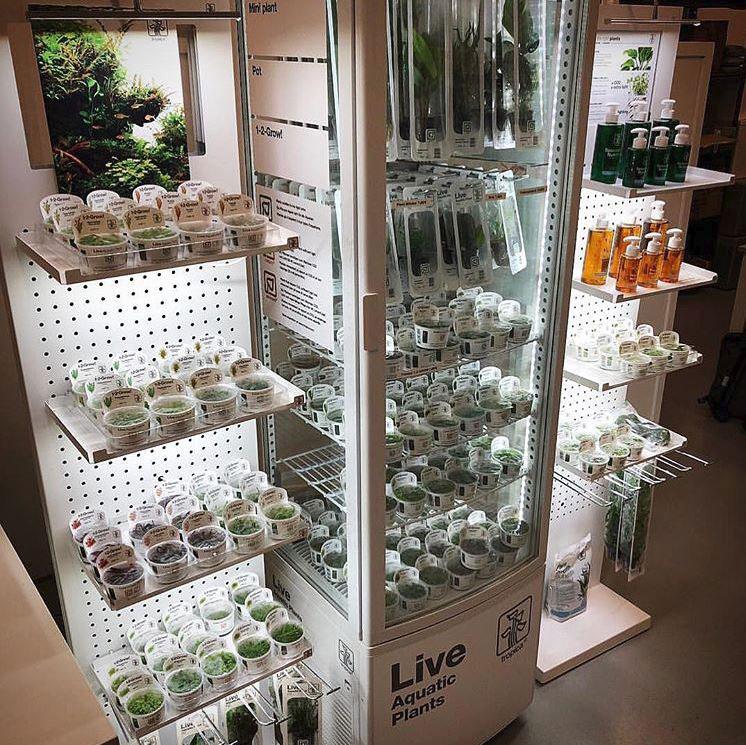 Cooler+displays-in-storeRED