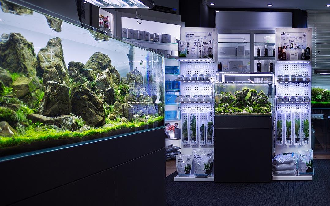 Green Aqua showroom Tropica displayRED